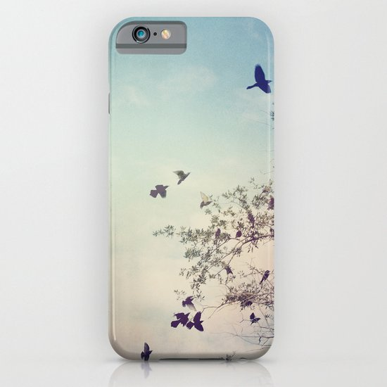 Birds of Clearwater iPhone & iPod Case