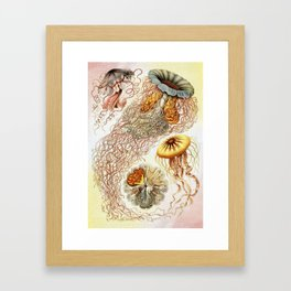 SEA CREATURES COLLAGE-Ernst Haeckel Framed Art Print