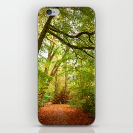 Path in the forest Nature iPhone Skin