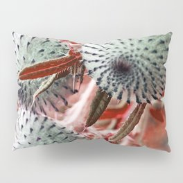 THISTLE in RED Pillow Sham