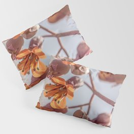 Signs of Spring Pillow Sham