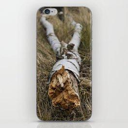 Birch Trunk iPhone Skin