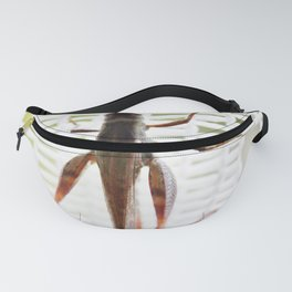 Grasshopper in lace curtain Fanny Pack