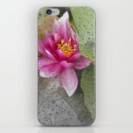 soft water lily IV iPhone Skin