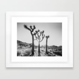 Three Brothers of Joshua Tree Framed Art Print