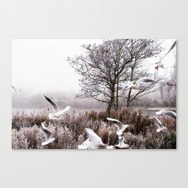 So cold Canvas Print