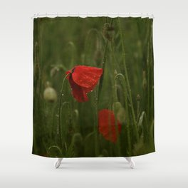 Red Poppies at Dusk Shower Curtain