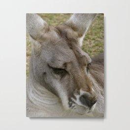 Roo Metal Print