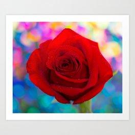 Red Rose and Rainbow Bokeh Art Print