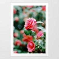 Camille Rose Art Print