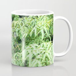 Moss-Covered Stairs To Nowhere in Tropical Rainforest Coffee Mug