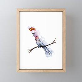 Major Mitchell Framed Mini Art Print