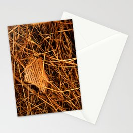 Lost Articles Stationery Cards