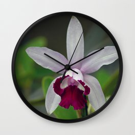 Cattleya Orchid (The Corsage Orchid) Wall Clock