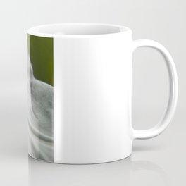 White Flower Macro Coffee Mug