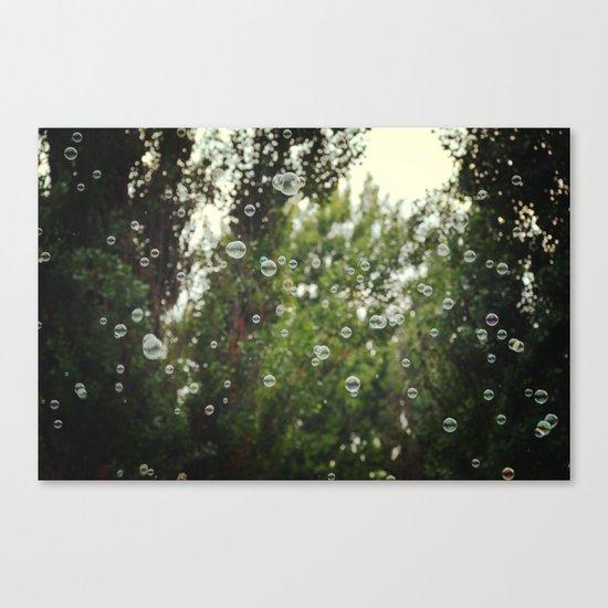 Bubbles I Canvas Print