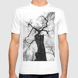 Cottonwood Tree B+W T-shirt