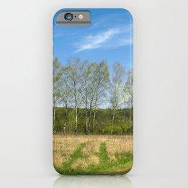 Birch sky iPhone Case