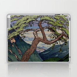 The Downwards Climbing Laptop & iPad Skin