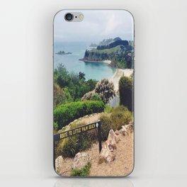 Waiheke Island View iPhone Skin