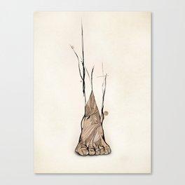 TOMS Foot Illustration  Canvas Print