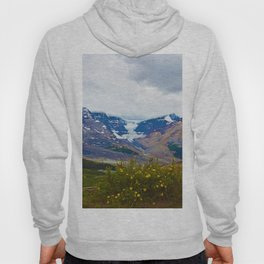 Athabasca Glacier in Jasper National Park, Canada Hoody