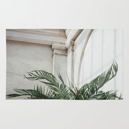 Palm in Orangery Rug