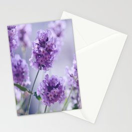 lavender Purple Stationery Cards