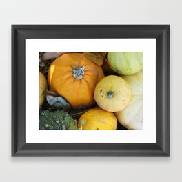 pumpkins Framed Art Print