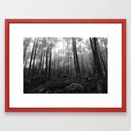 THE WOODS I Framed Art Print