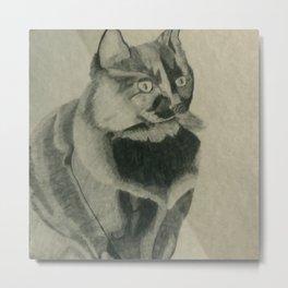 Beauty Cat Metal Print