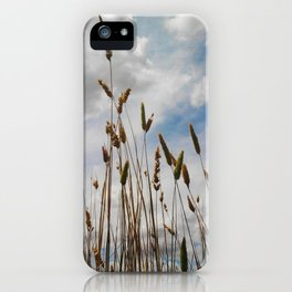 Wheat and Clouds iPhone Case