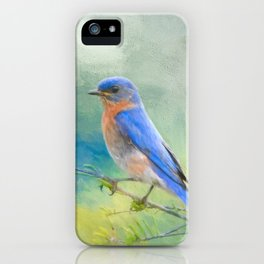 Bluebird In The Garden iPhone Case