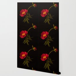 Two Red Peonies Too Wallpaper