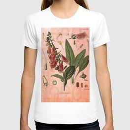 Vintage Botanical Illustration Collage, Foxgloves, Digitalis Purpurea T-shirt