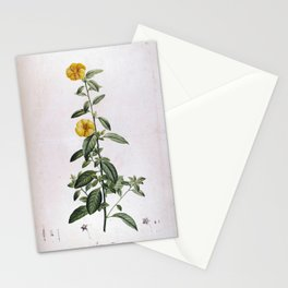 linum trigynum Redoute Roses 1 Stationery Cards