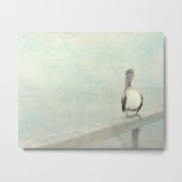 Pelican Bird Metal Print