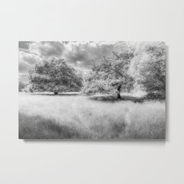 The Peaceful Meadow Metal Print