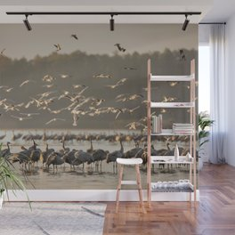 Common Cranes at sunrise Wall Mural