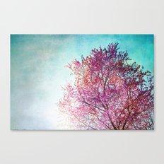 Spring Tree 3 Canvas Print