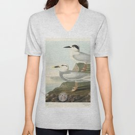 Havells Tern and Trudeaus Tern from Birds of America (1827) by John James Audubon (1785 - 1851) etch Unisex V-Neck