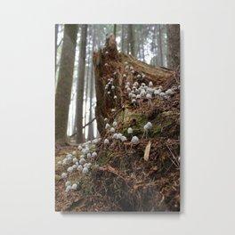 Decomposition: Colony II (1) Metal Print