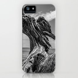 Whidbey Island Driftwood iPhone Case