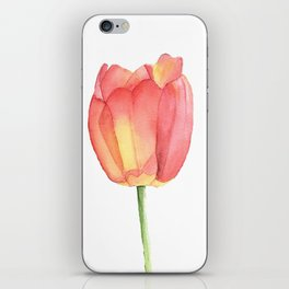 Red and yellow single tulip in watercolor iPhone Skin