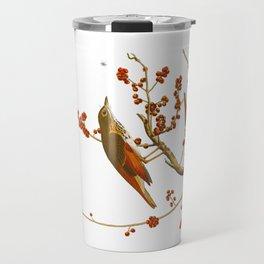 Hermit Thrush Bird Travel Mug