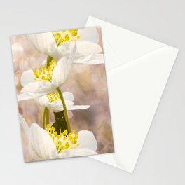 Black Cat With White Flowers #decor #buyart #society6 Stationery Cards