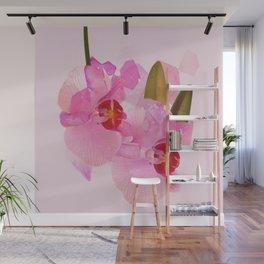 broken orchid Wall Mural