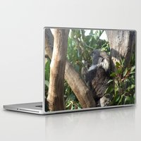 koala Laptop & iPad Skins featuring Koala by Jasmine van Aken