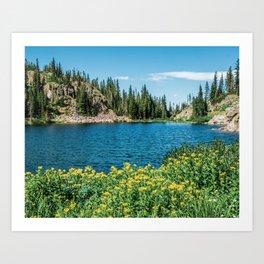 Yellow Flower Lake // Beautiful Daylight Evergreen Mountain Landscape Photograph Art Print