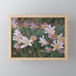 Beauty Surrounds Us Framed Mini Art Print